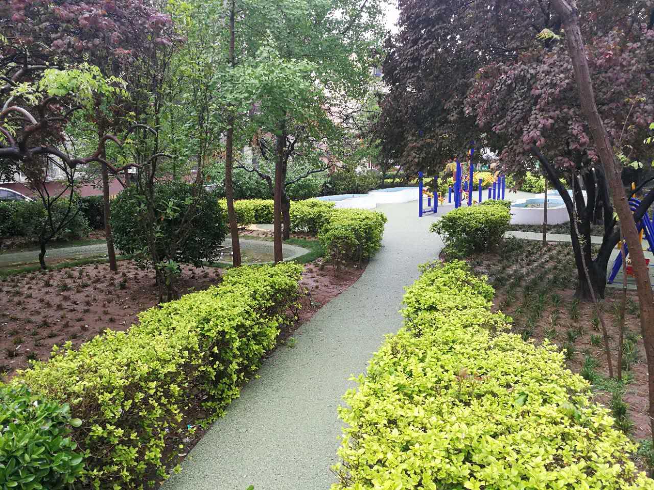 雨水花园改造