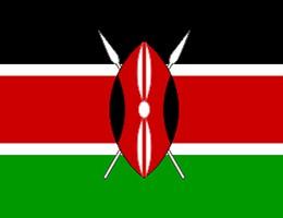 肯尼亚公司