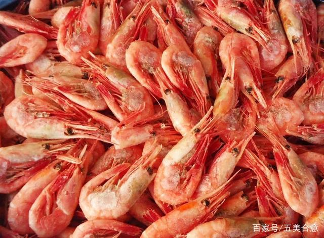 走进挪威大海产,除了三文鱼,北极虾也是海鲜极品