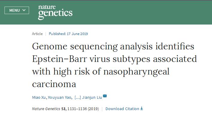 新发现与鼻咽癌高风险相关的EB病毒亚型