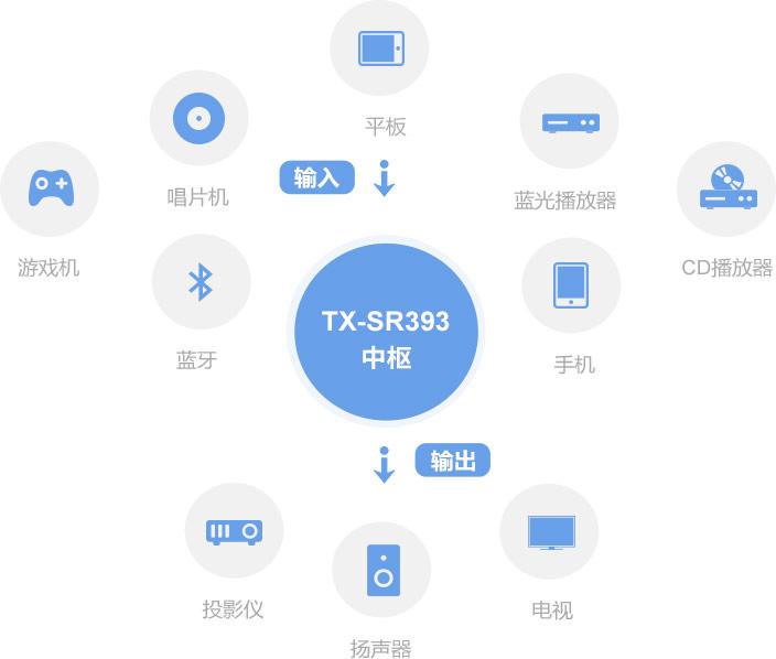 TX-SR393