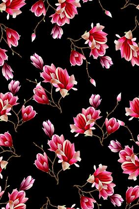 黑底雨露红色大红花