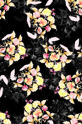 盛开散开飘零花卉