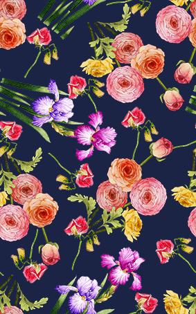 芳香植物水彩花色