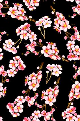 黑底红色飘零粉红花