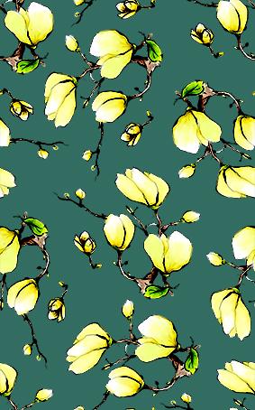 墨绿底菊白灯笼花
