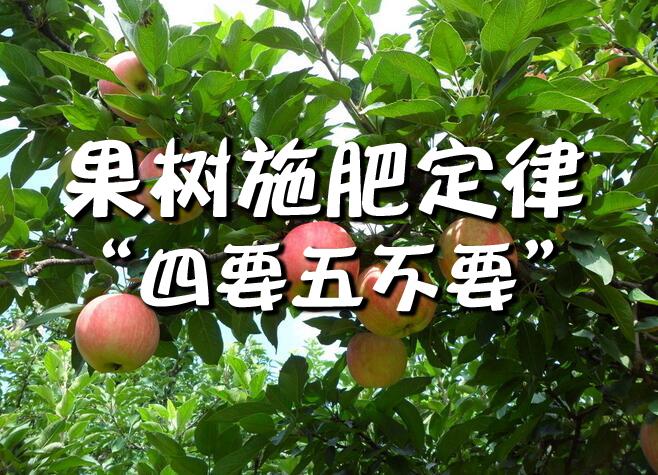 果树施肥定律