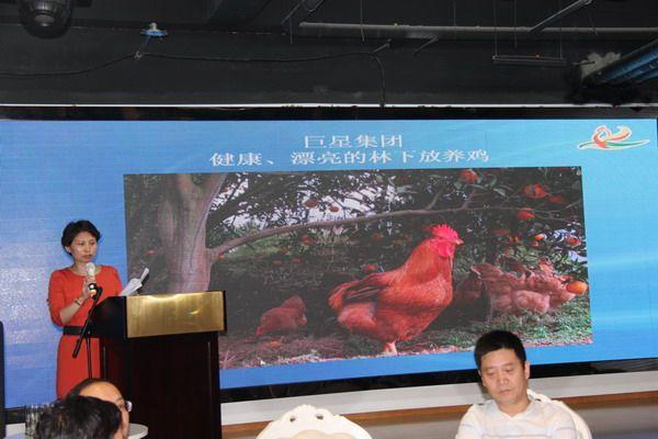 """巨星禽业协办成都""""百鸡宴""""——上百市民品尝安全、放心、美味鸡肉"""
