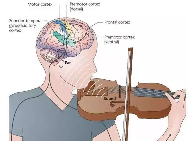 一招解決孩子無法堅持學習樂器的困擾!