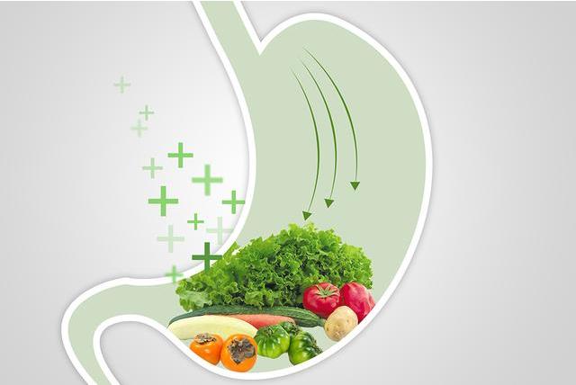 肠道不好怎么调理 改善肠道吃哪些食物