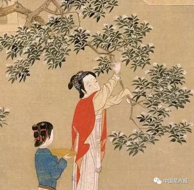 秋日插花 枫、桂、菊各有古意