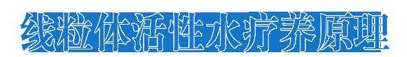 顺如合上海医疗科技有限公司