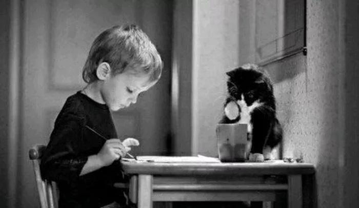 单亲家庭的孩子缺少的是情感的交流吗?