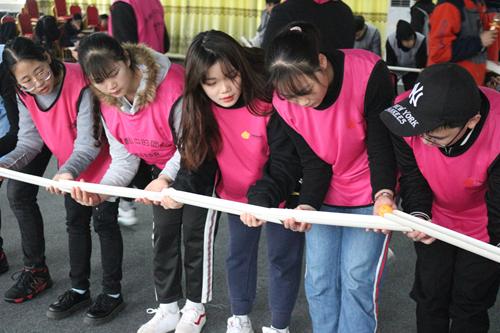 高绩效团队打造拓展训练心得体会