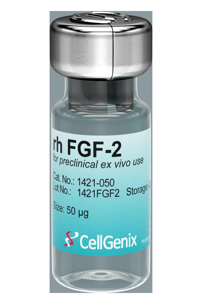 Preclinical rh FGF-2