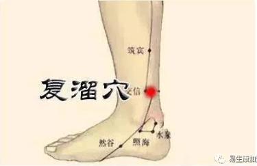 经络学说:肾经