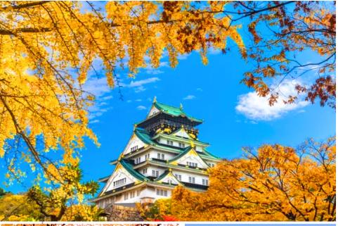 【花样日本】日本本州东京.富士山.双古都(奈良.京都)茶道体验.经典6天之旅