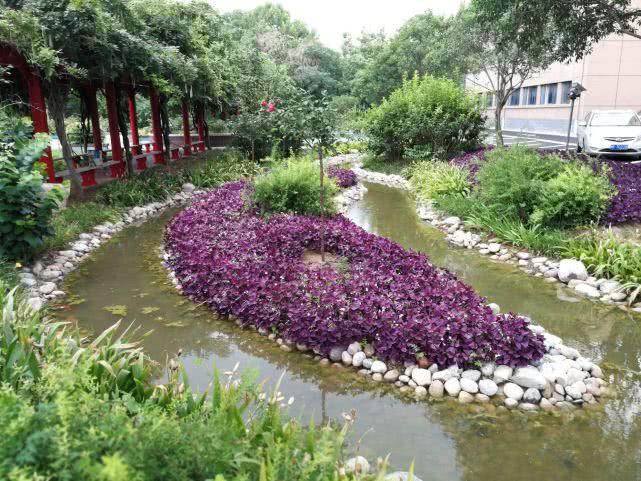 """鹤壁通过海绵城市试点建设 雨水收集模块""""大显身手"""""""
