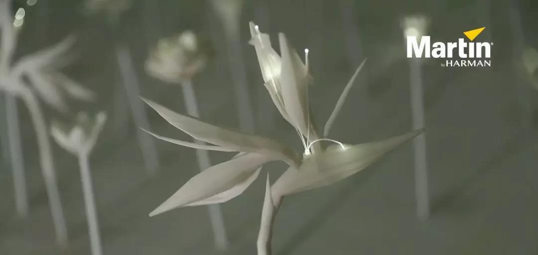 Why Green 灯光艺术装置:Martin 与花的美妙奇缘