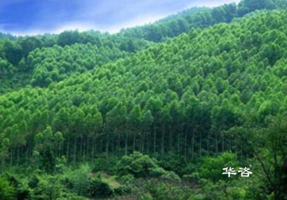 湖南省专业地形图测绘单位有哪些要点?