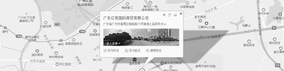 广东江有国际商贸有限公司