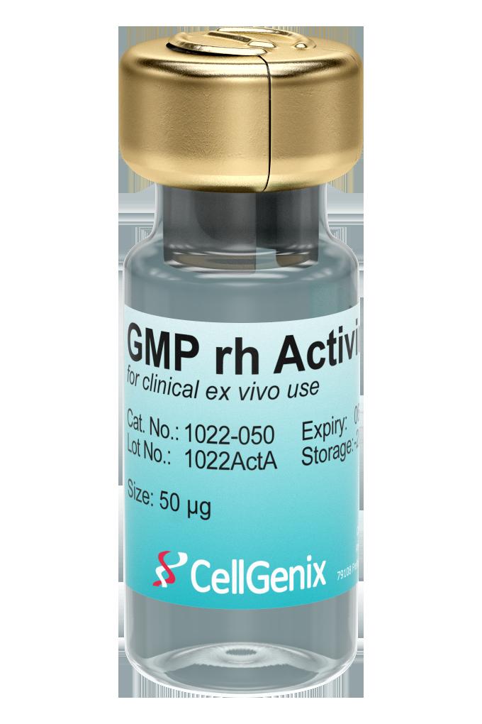 GMP rh Activin A