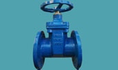 DIN&BS resilient seated gate valve