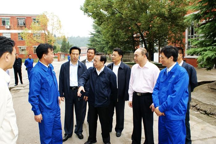 湖北省委书记罗清泉在华舟重工