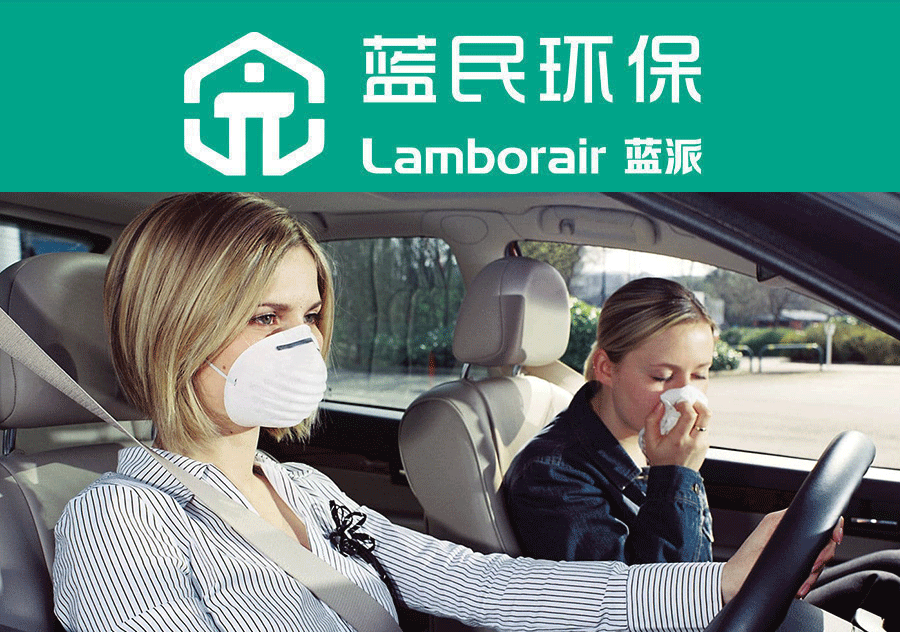 被困在车内的真相:空气污染