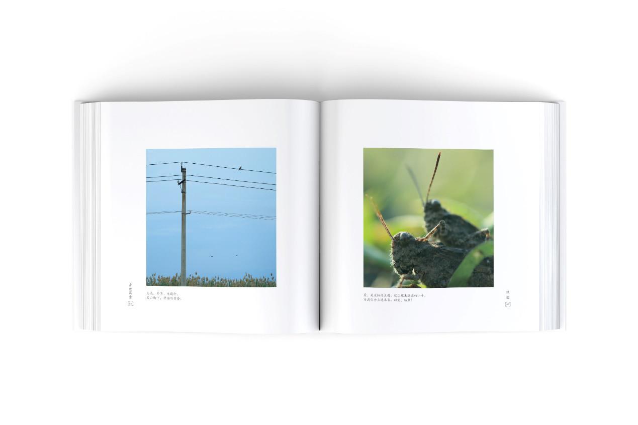 【身边风景】热烈祝贺我会执行会长赵崇甫摄影作品《身边风景》由西泠印社出版!