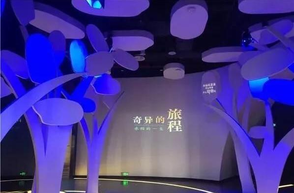第一个水稻博物馆-袁隆平水稻博物馆开馆了