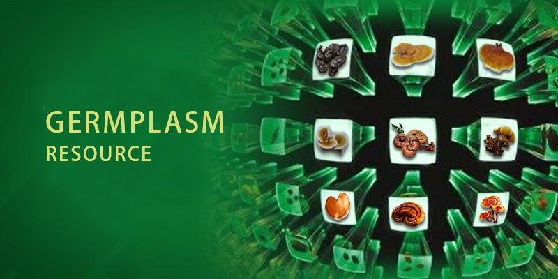Food and medicinal germplasm resource bank