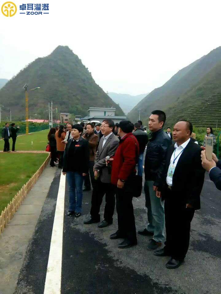 """贵州罗甸县""""三沼""""生态循环农业喷灌工程"""