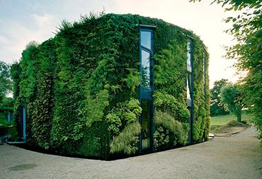 立体绿化整体解决方案能力