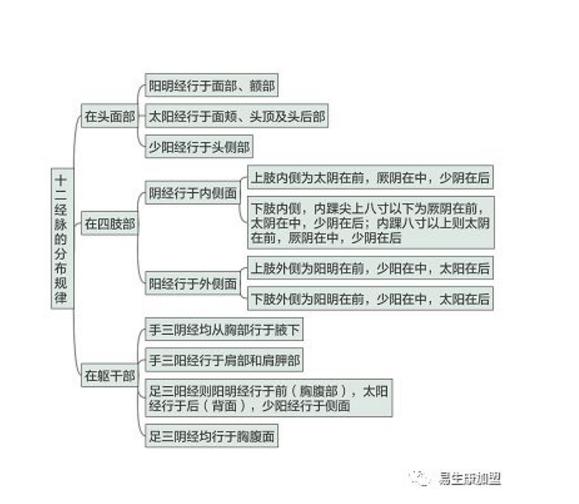 经络养生文化的内涵-十二经脉