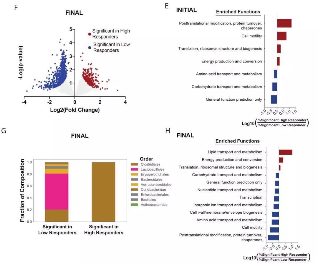 """喝水都长胖?MCP:粪便微生物的宏蛋白组可预测""""易胖体质"""""""