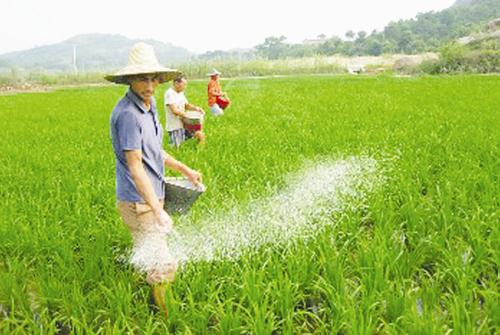 磷肥的作用