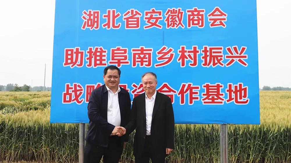 马占军会长率湖北省安徽商会、华中农大科创团队为助推乡村振兴赴阜南考察