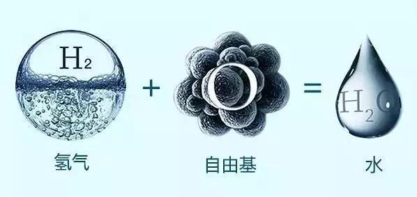 富氢水机厂家