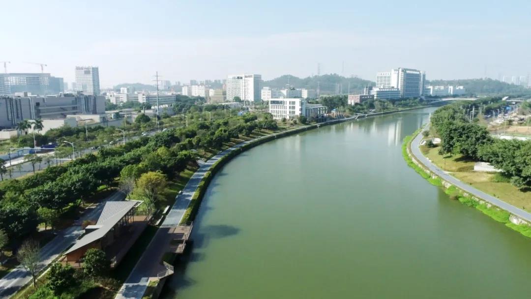 我們在城基 | 重塑茅洲河碧道生命系統 · 再添深圳生態新名片