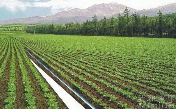 以色列农业