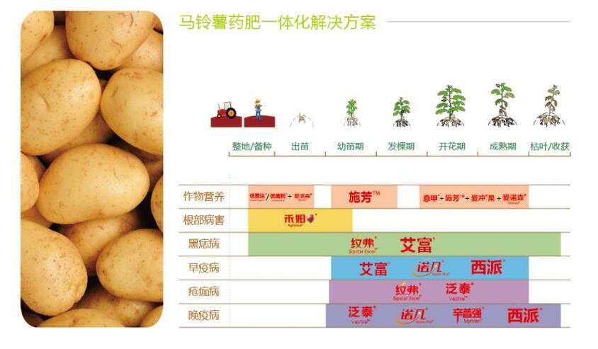 马铃薯药肥一体解决方案