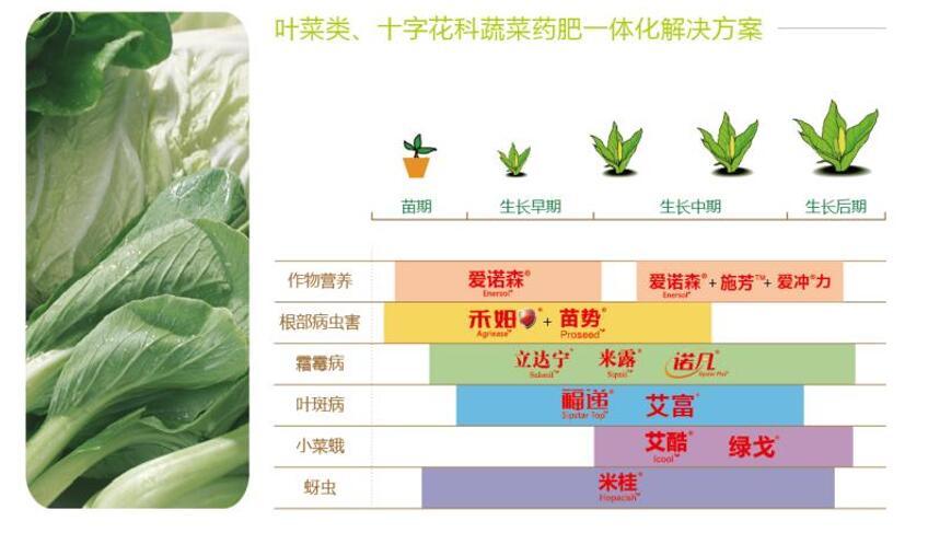 叶菜类、十字花科蔬菜药肥一体化解决方案