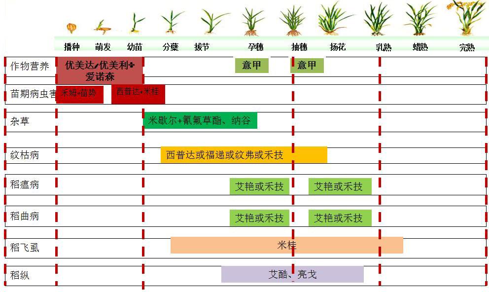 水稻药肥一体化解决方案