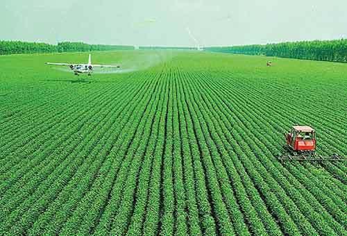 """为什么大农场农业在我国遭遇""""滑铁卢""""式失败"""
