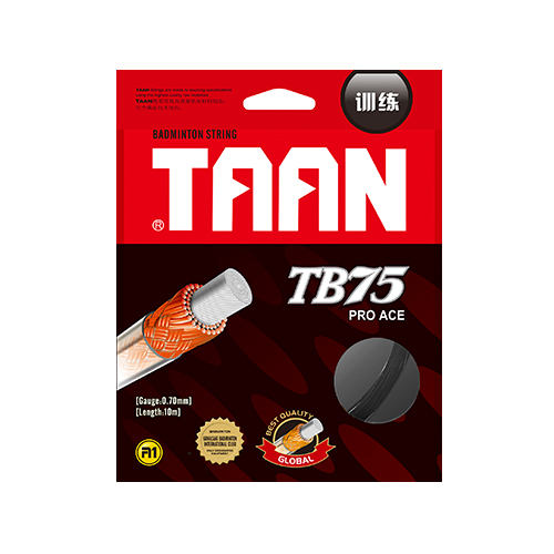 TAAN TB75 resistance to play badminton Power series