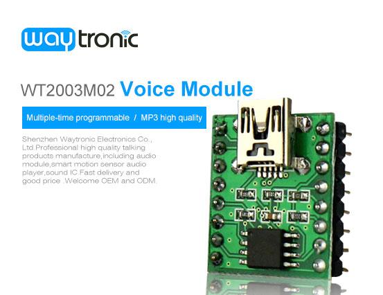 Voice Module, Music Module, Programmable Sound Module