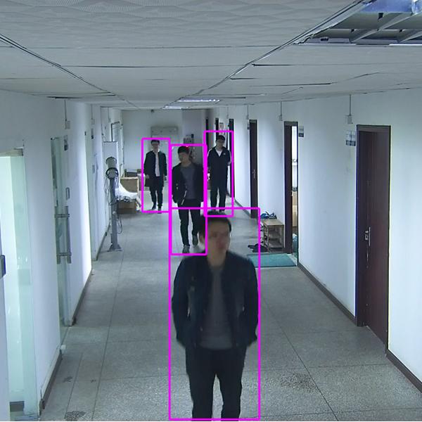 场景识别与异常行为智能分析仪