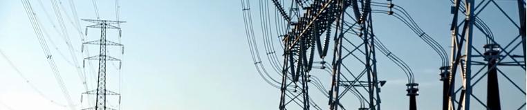 Intelligent Distribution Networks