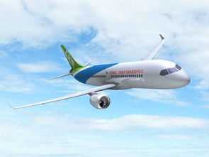 Airliner successfully passed the first flight review